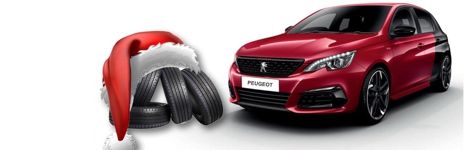 Peugeot Skladove Vozidla Pneuma Min (1)