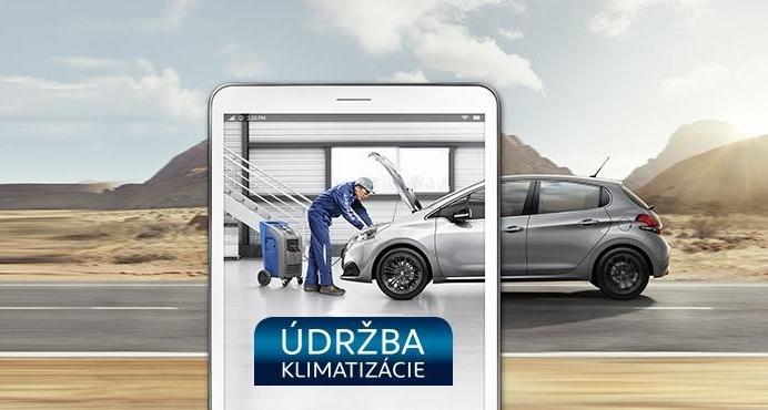 Peugeot Servis Klimatziacia