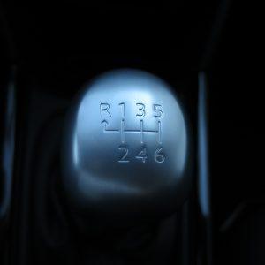 Img 4817