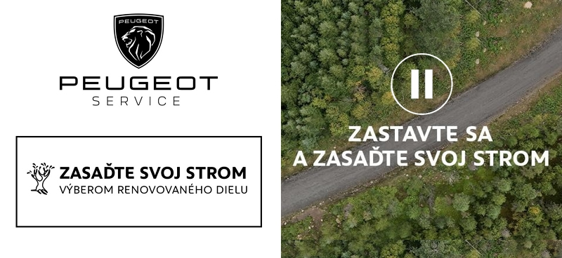 Peugeot Servis Strom 2