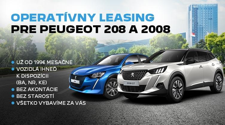 Peugeot 208 Web Mobil