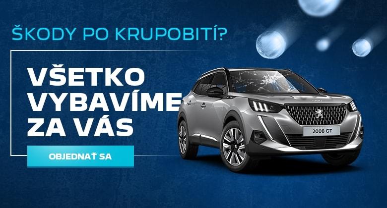 Peugeot Servis Cta2